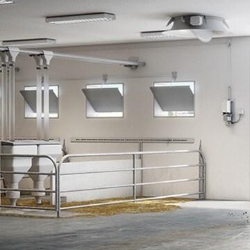 Aziende agricole e impianti per l'allevamento