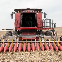 Melhores colheitas de milho com uma placa de colheita regulada eletricamente