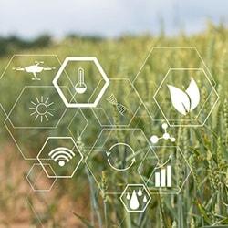 Precision Farming - Prozessoptimierung durch Technik