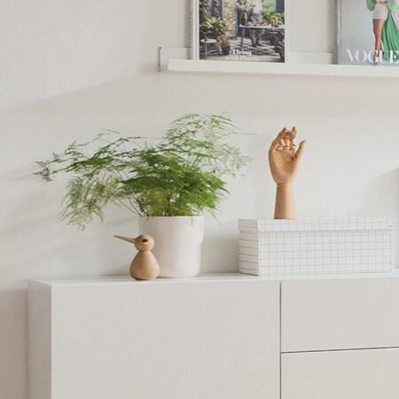 Plante og pynt kontor