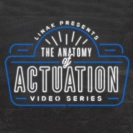 Anatomie de l'Actionnement